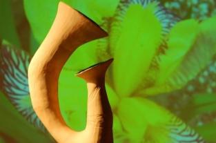 Terra delle risonanze Romantik – Anteprima I concerti del 47° Festival di Nuova Consonanza nella Comunità Montana dell'Aniene - Riofreddo | Museo delle Culture Villa Garibaldi 2010